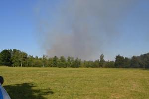 Bild - 120 Einsatzkräfte löschen Moorbrand